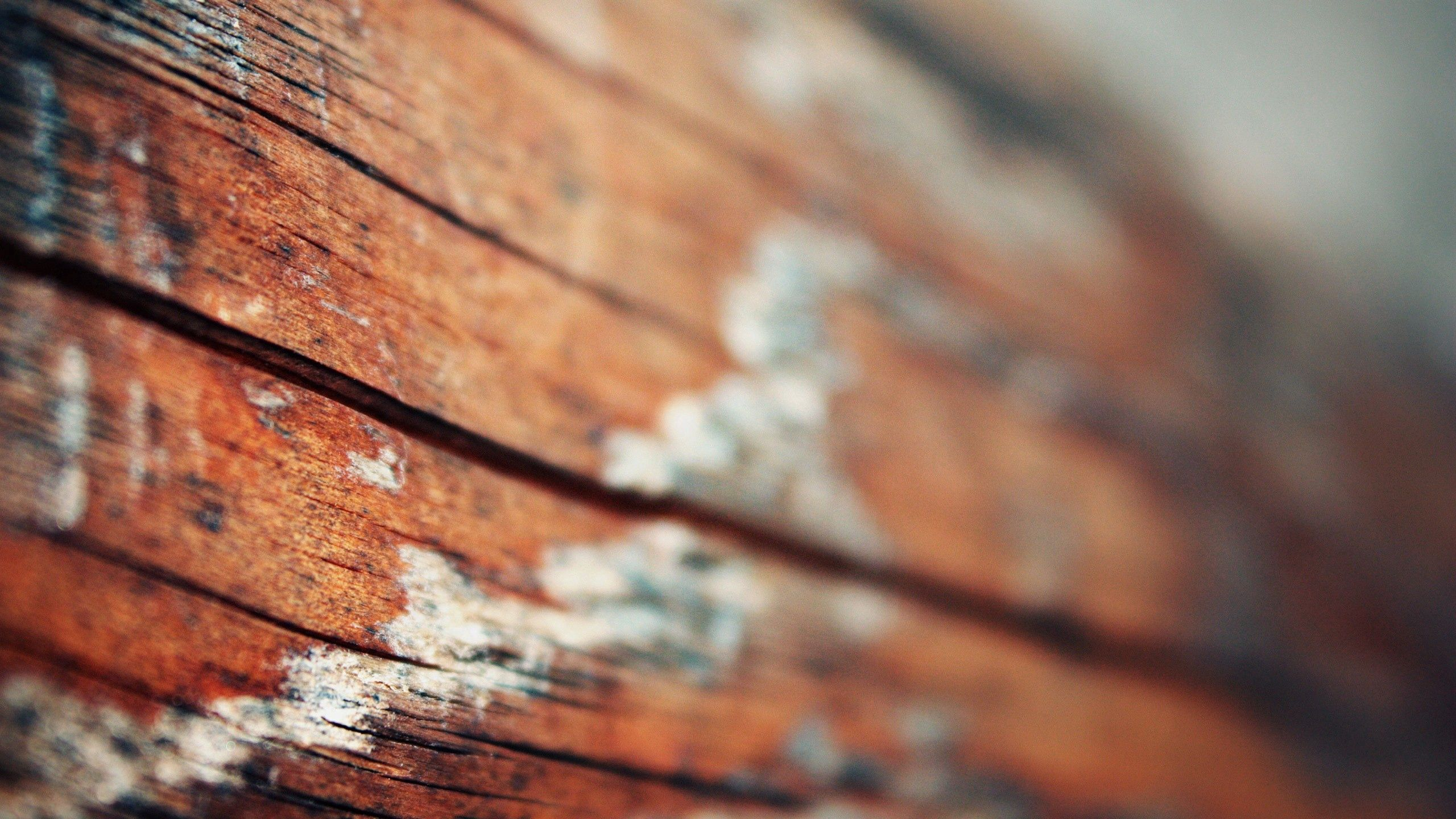 88078 Screensavers and Wallpapers Wooden for phone. Download Macro, Light, Wood, Wooden, Surface, Light Coloured pictures for free