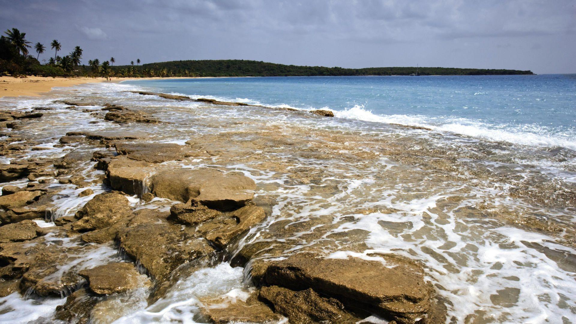 24499 скачать обои Пейзаж, Камни, Море, Волны, Пляж, Пальмы - заставки и картинки бесплатно