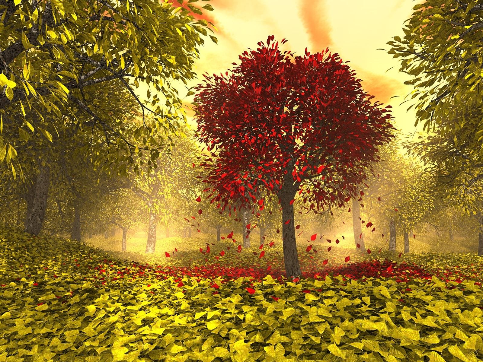 Скачать картинку Пейзаж, Деревья, Осень, Листья в телефон бесплатно.