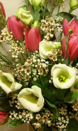 107662 télécharger le fond d'écran Fleurs, Bouquet, Composition, Tulipes - économiseurs d'écran et images gratuitement