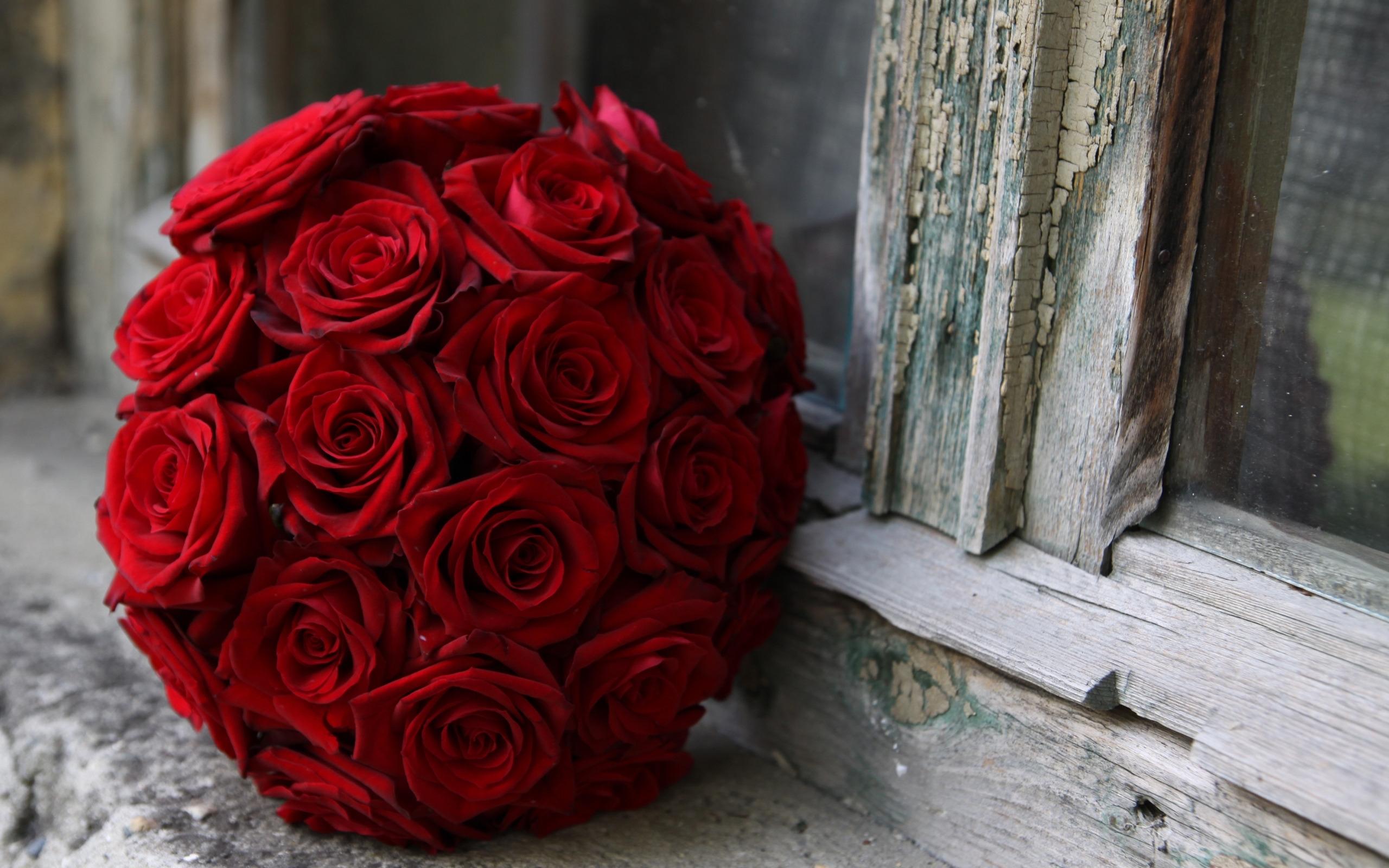 39284 télécharger le fond d'écran Plantes, Fleurs, Roses, Bouquets - économiseurs d'écran et images gratuitement