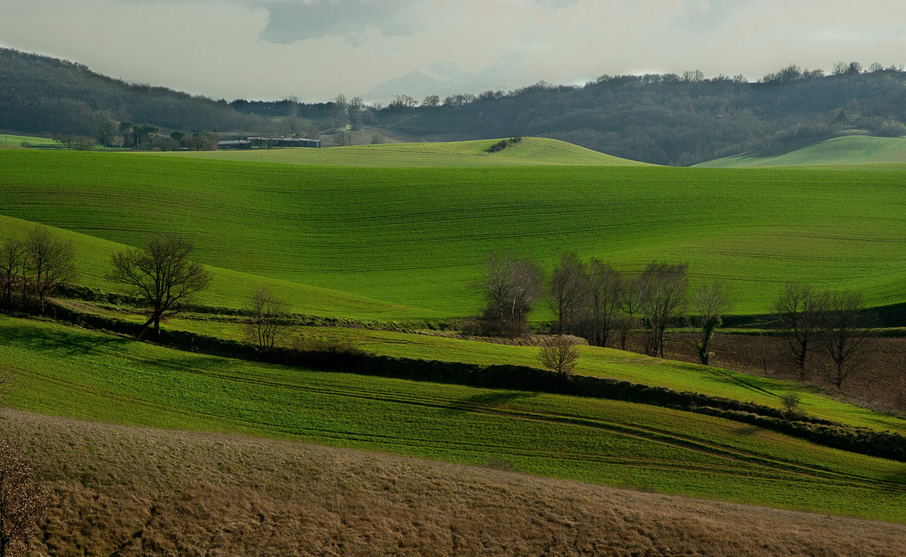 131280壁紙のダウンロード自然, フランス, 丘, フィールド, 畑, 草-スクリーンセーバーと写真を無料で