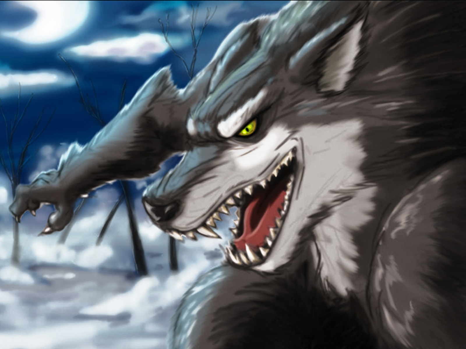 4825 download wallpaper Animals, Wolfs, Pictures screensavers and pictures for free