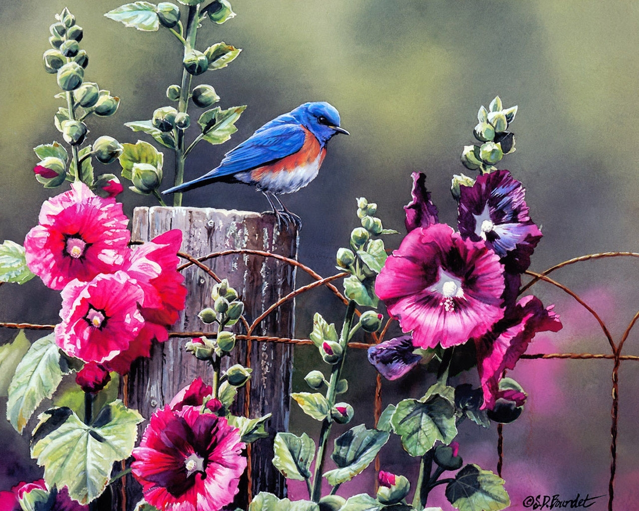 4929 download wallpaper Animals, Plants, Flowers, Birds, Art, Pictures screensavers and pictures for free