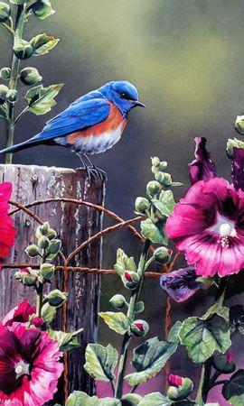 4929 Protetores de tela e papéis de parede Imagens em seu telefone. Baixe Animais, Plantas, Flores, Aves, Arte, Imagens fotos gratuitamente
