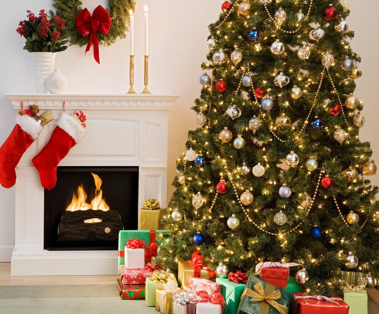 14879 télécharger le fond d'écran Fêtes, Nouvelle Année, Sapins, Noël - économiseurs d'écran et images gratuitement