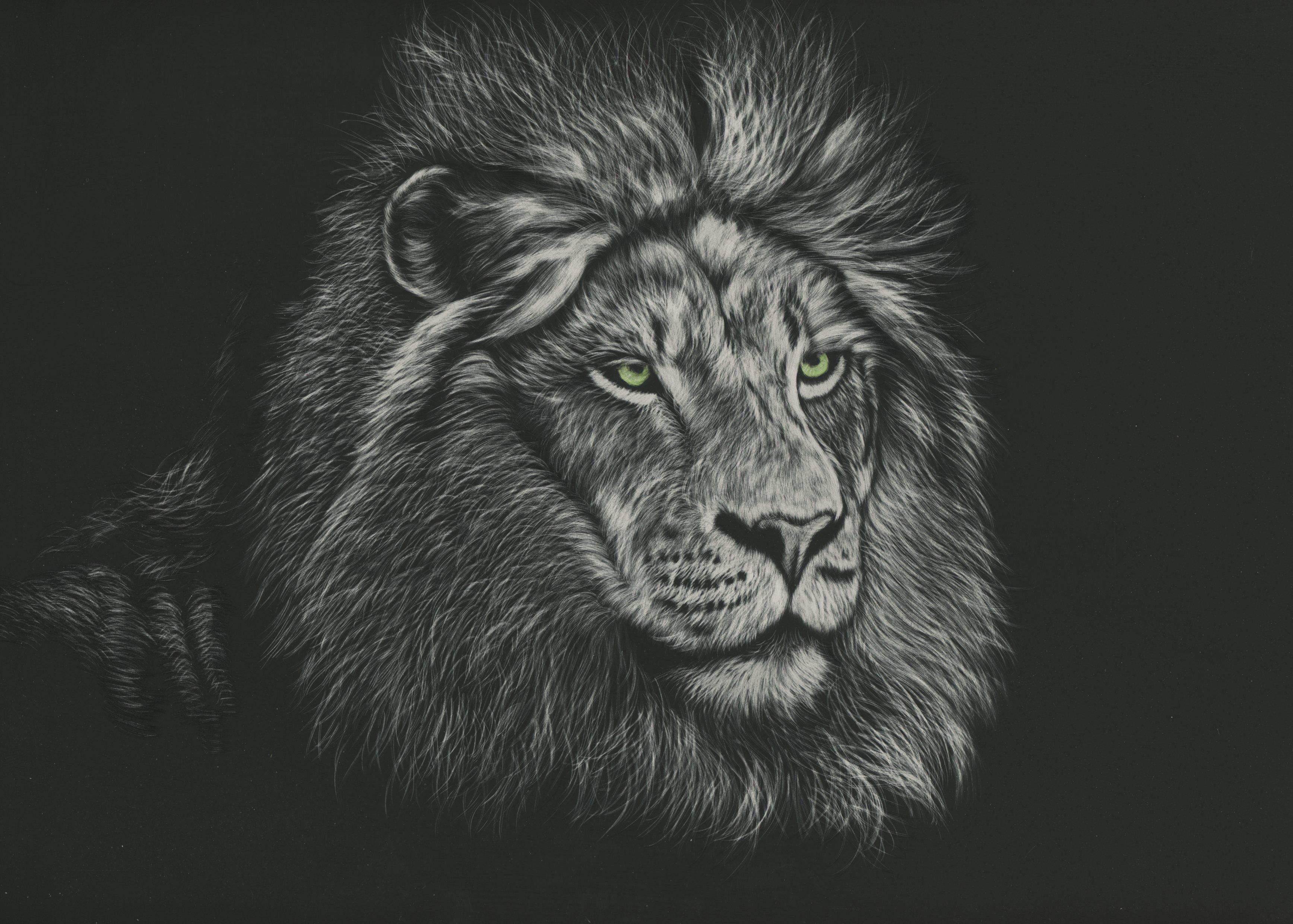 105211 Protetores de tela e papéis de parede Rei Das Feras em seu telefone. Baixe Arte, Leão, Um Leão, Predator, Predador, Juba, Rei Das Feras, Rei Das Bestas fotos gratuitamente