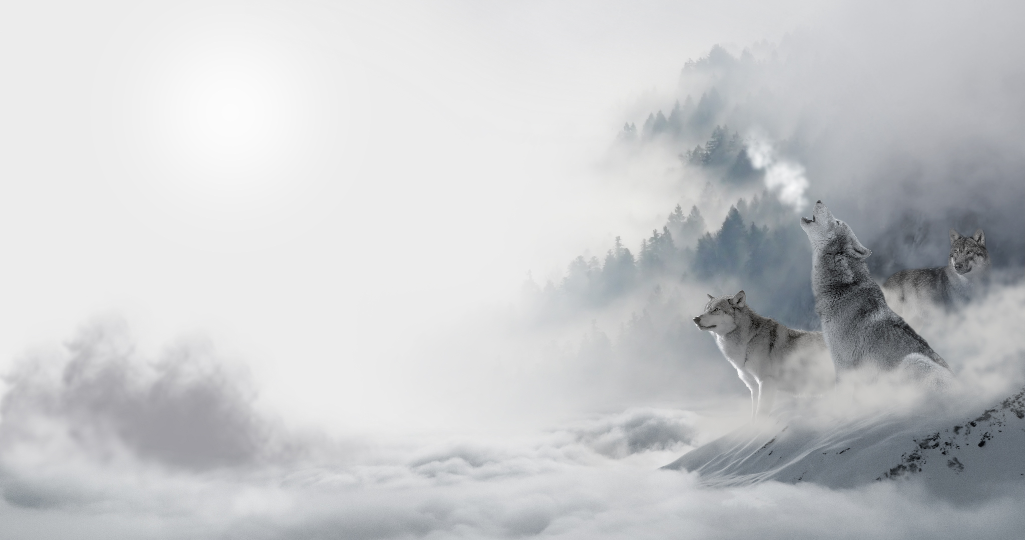 69454 download wallpaper Animals, Wolfs, Winter, Snow, Predators, Howl screensavers and pictures for free
