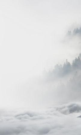 69454 завантажити шпалери Тварини, Вовки, Хижаки, Хижаків, Сніг, Зима, Завивання, Крик - заставки і картинки безкоштовно