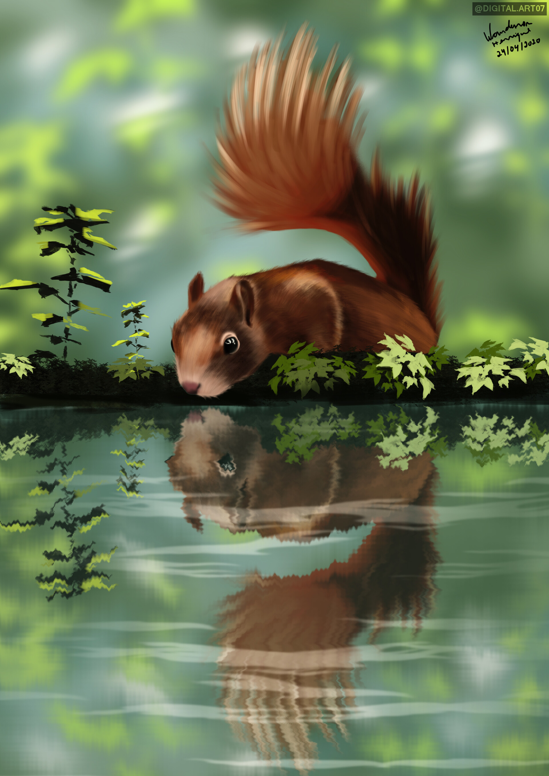 85340 download wallpaper Squirrel, Beast, Reflection, Art screensavers and pictures for free