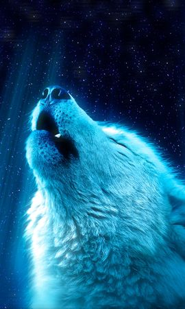 108212 download wallpaper Animals, Wolf, Predator, Howl screensavers and pictures for free