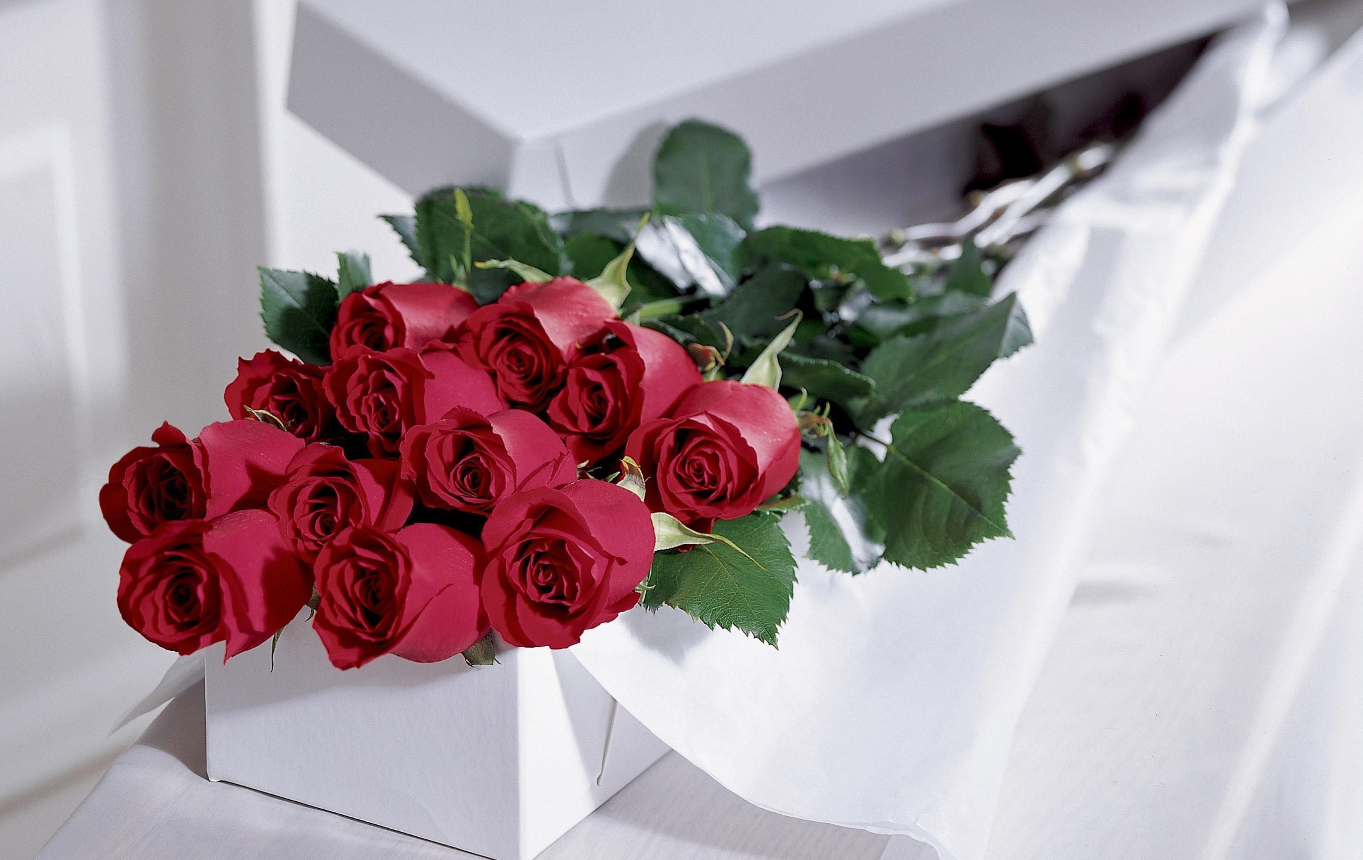 91524 скачать обои Цветы, Букет, Шикарно, Коробка, Розы - заставки и картинки бесплатно