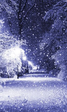20463 скачать обои Пейзаж, Зима, Деревья, Дороги, Снег - заставки и картинки бесплатно