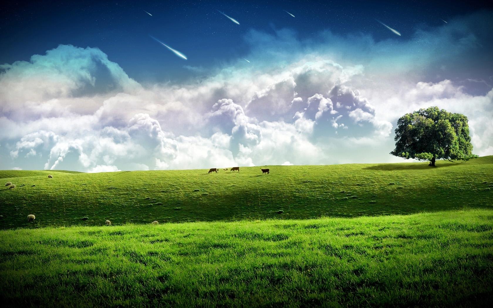 524 скачать обои Пейзаж, Трава, Небо, Арт - заставки и картинки бесплатно