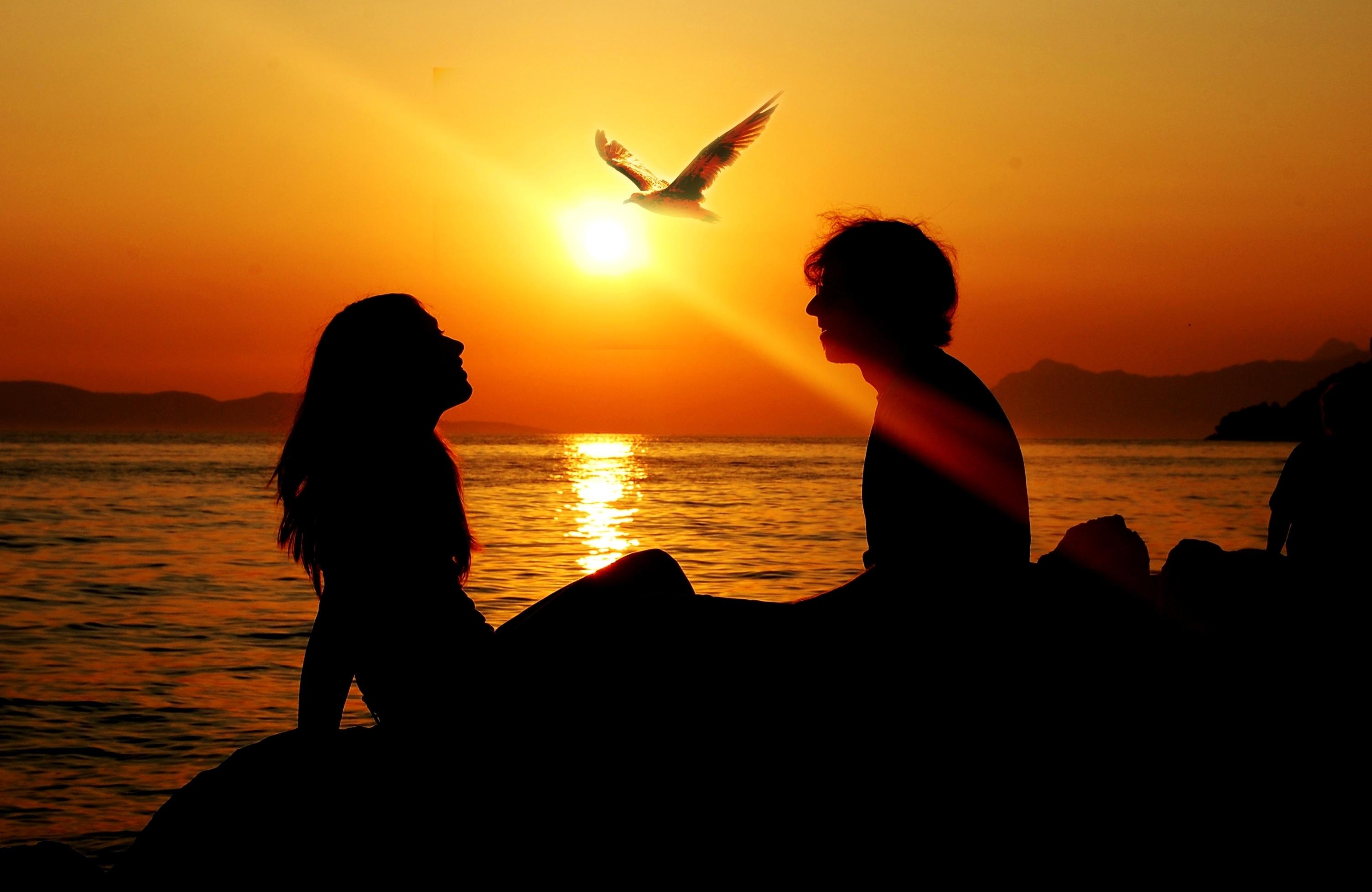 142027 télécharger le fond d'écran Fille, Coucher De Soleil, Été, Rayon, Amour, Mer, Homme, Oiseau, Liberté, Silhouette, Mouette, Sun - économiseurs d'écran et images gratuitement