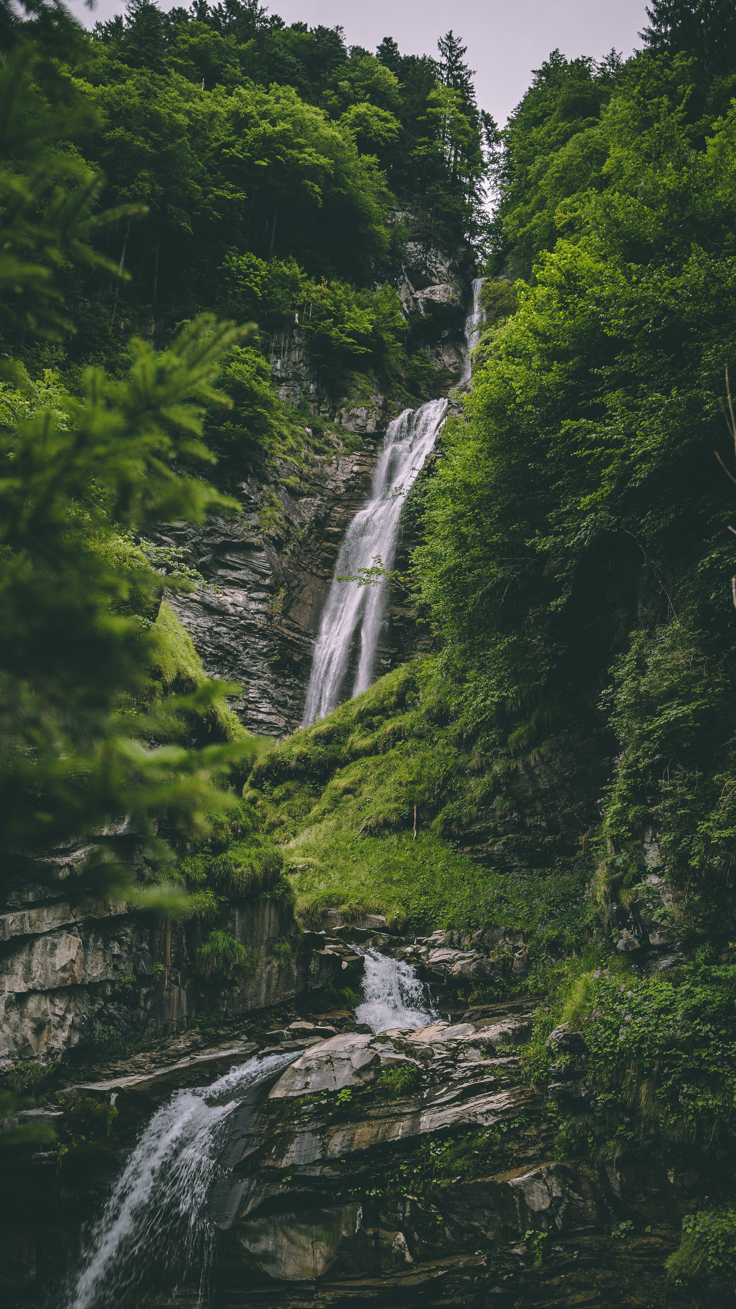 114915 download wallpaper Nature, Trees, Rock, Forest, Greens, Stone, Creek, Brook screensavers and pictures for free