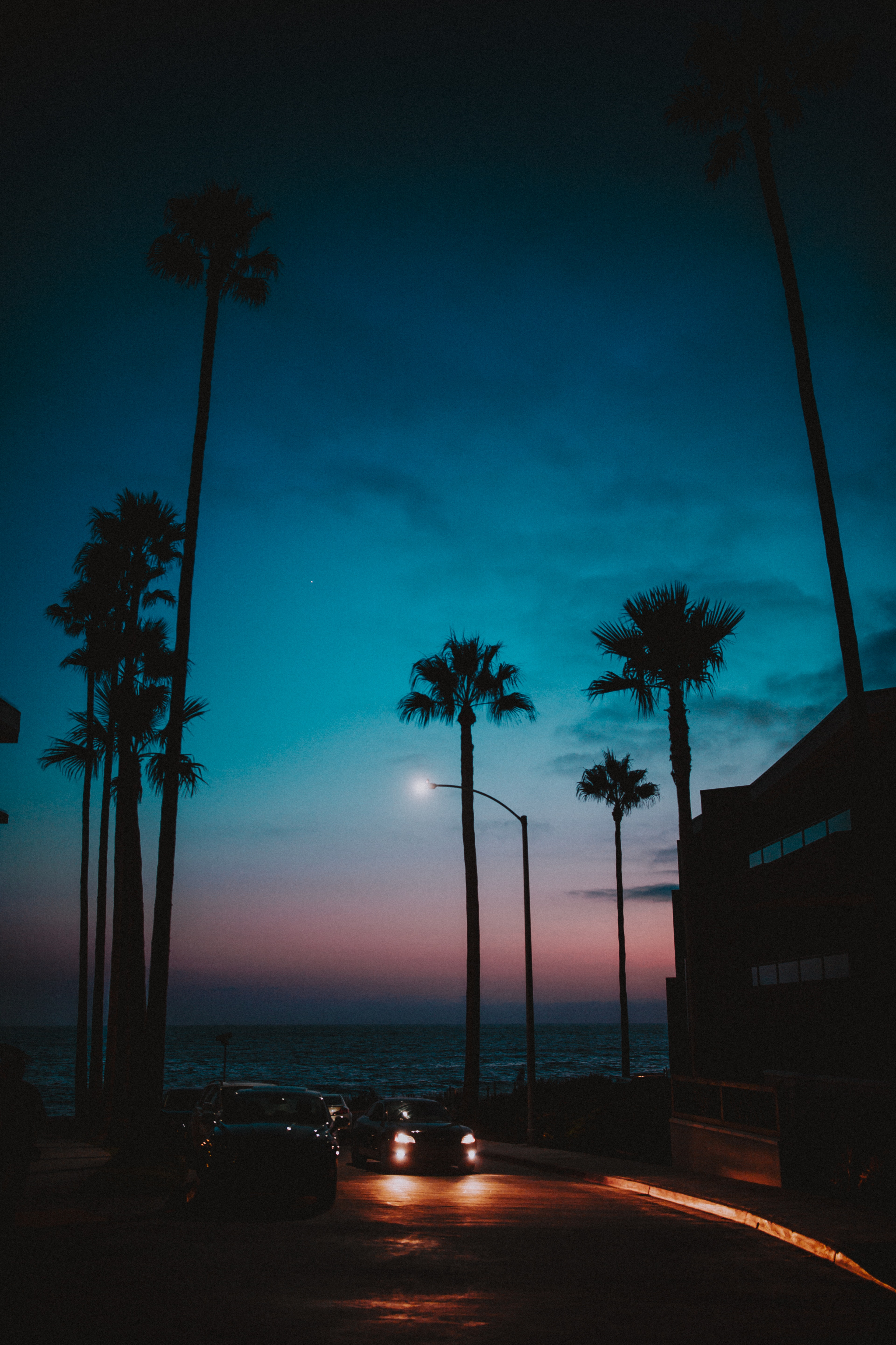 71440 download wallpaper Dark, Cars, Sunset, Night, Tropics, Palms screensavers and pictures for free
