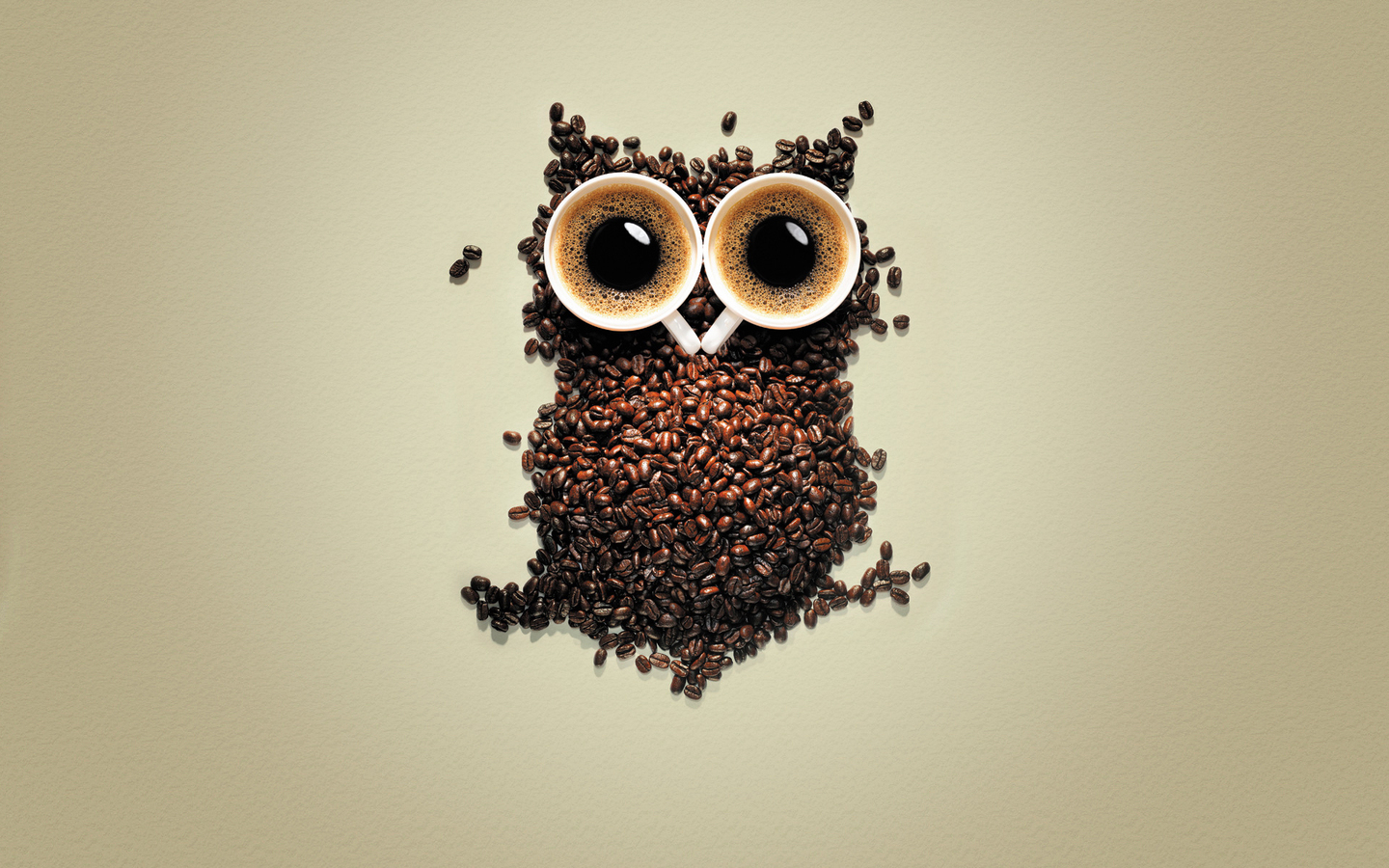 14494 download wallpaper Funny, Animals, Art, Owl, Coffee screensavers and pictures for free