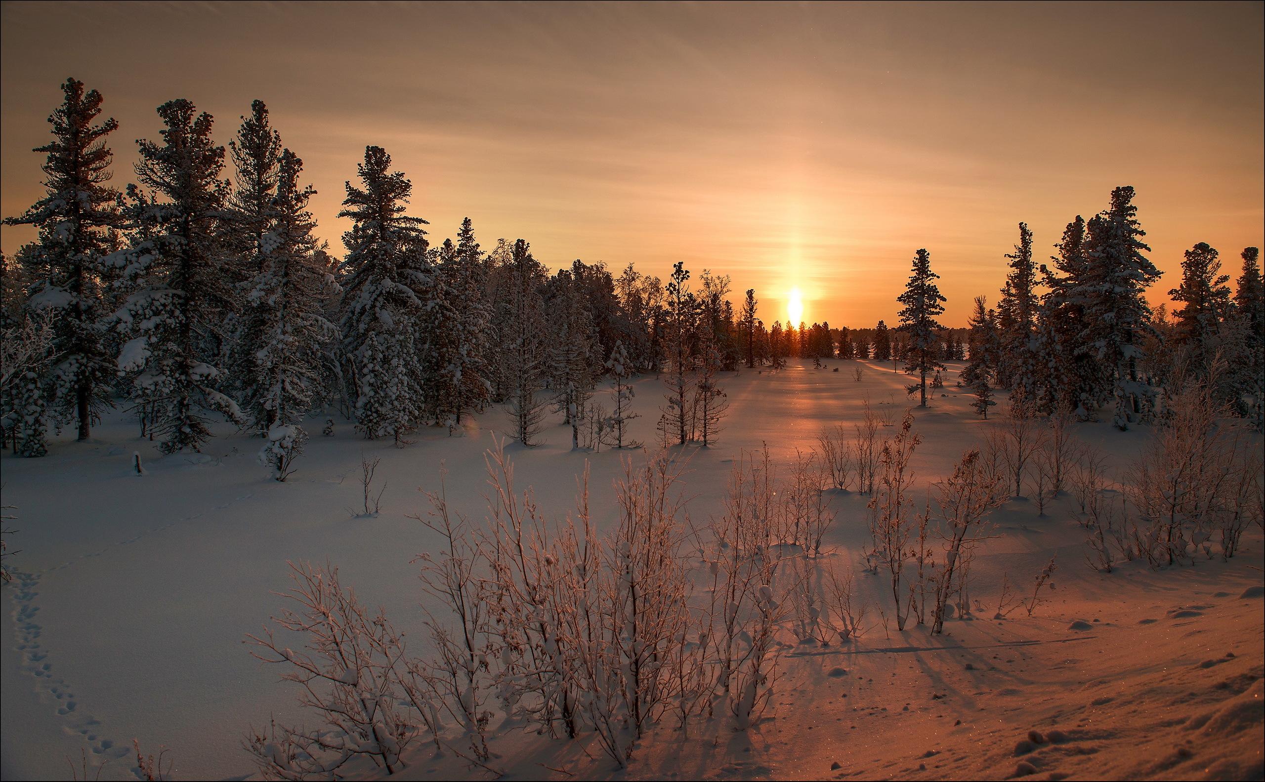 157832 Hintergrundbild herunterladen Schnee, Winterreifen, Natur, Sunset, Grass - Bildschirmschoner und Bilder kostenlos