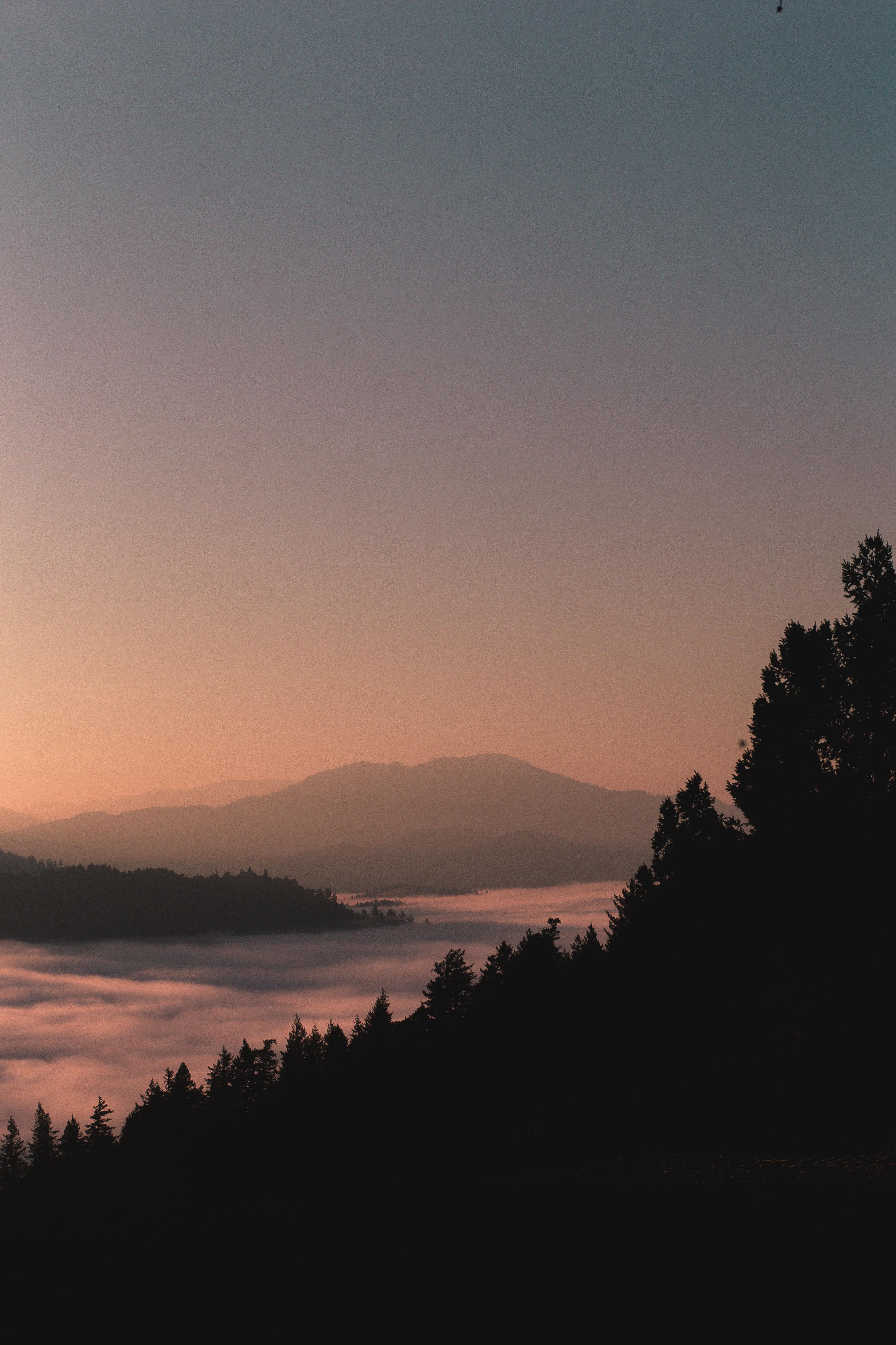 100424 Hintergrundbild herunterladen Mountains, Natur, Wald, Nebel, Dämmerung, Twilight, Umrisse, Umreißt - Bildschirmschoner und Bilder kostenlos