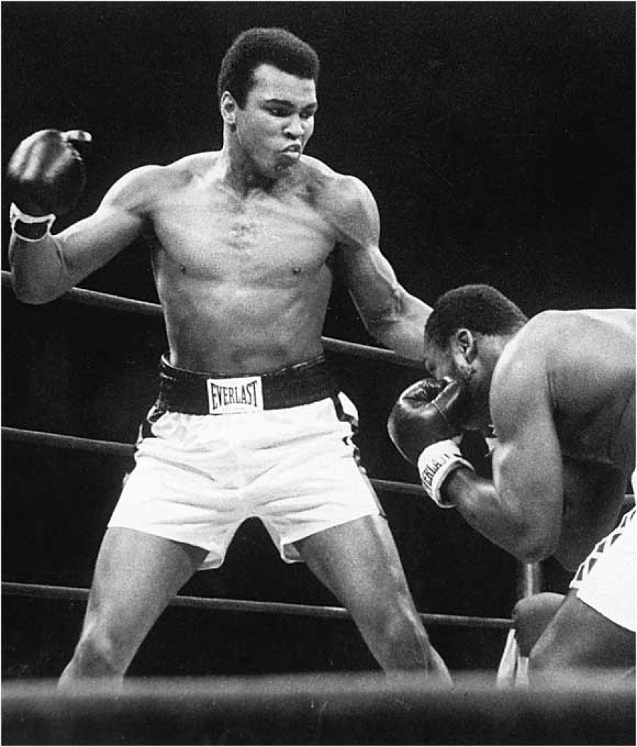 17181 download wallpaper Sports, People, Men, Boxing, Muhammad Ali screensavers and pictures for free