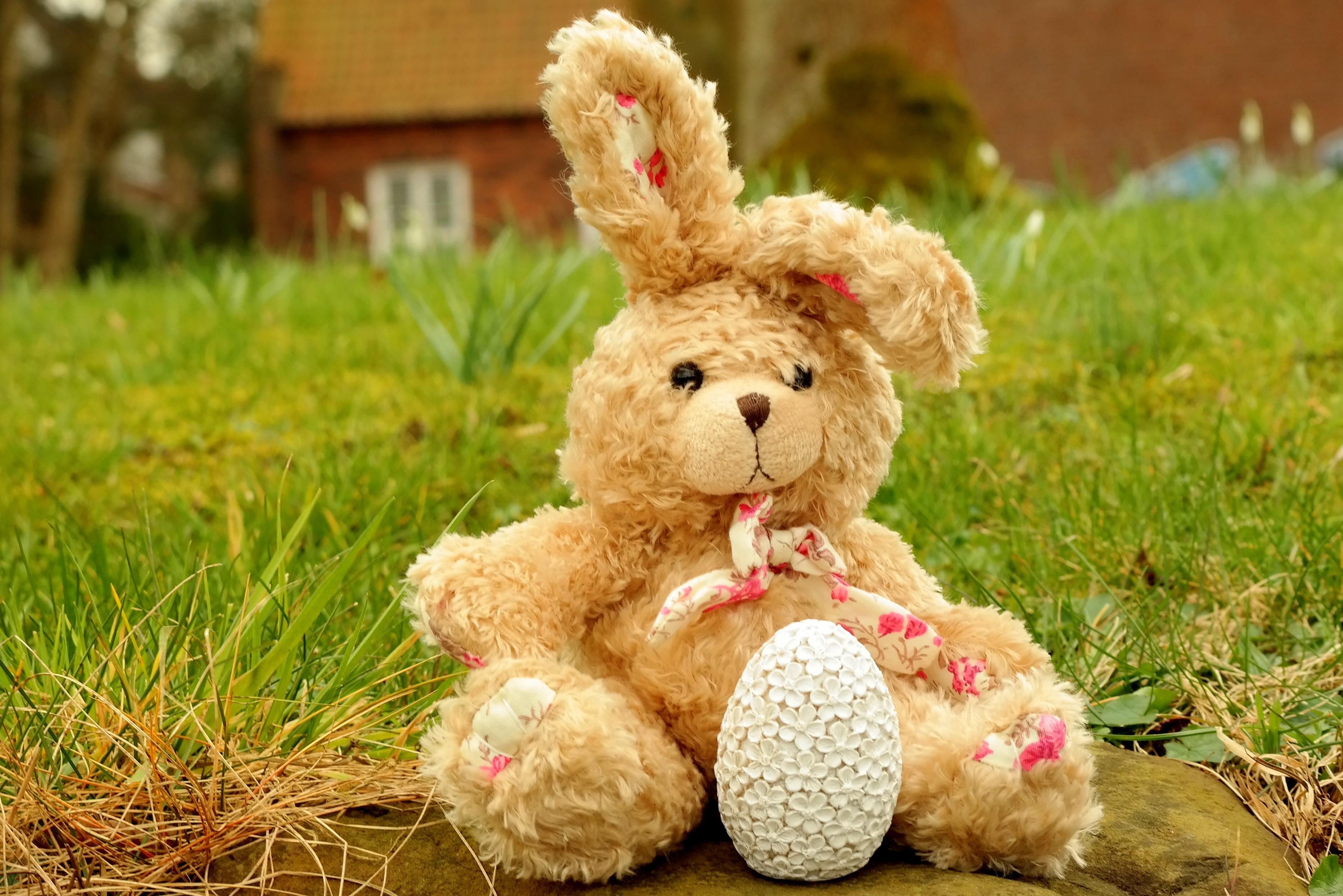 102246 Hintergrundbild herunterladen Feiertage, Ostern, Spielzeug, Hase, Ei - Bildschirmschoner und Bilder kostenlos