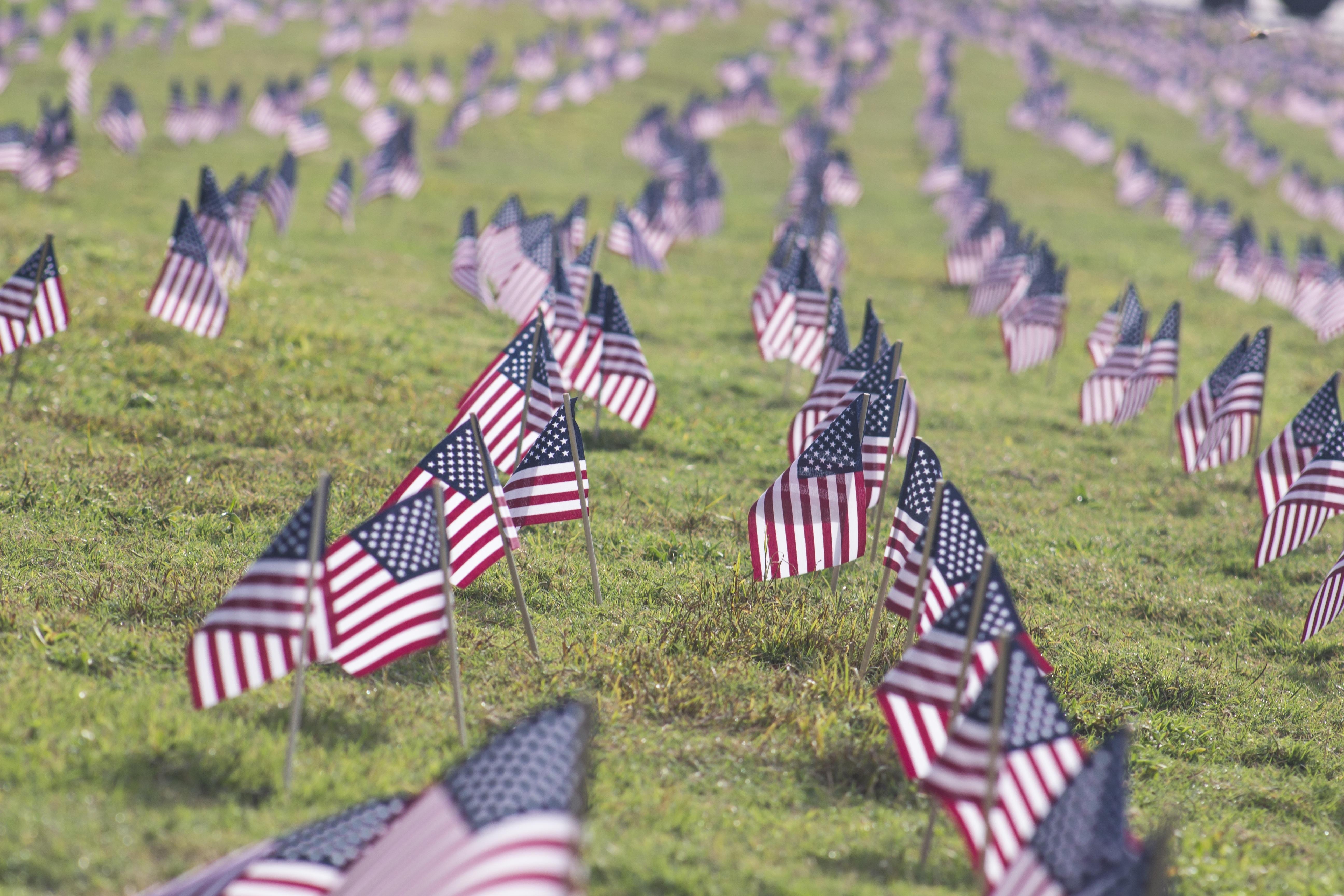76718 Заставки и Обои Флаги на телефон. Скачать Флаги, Разное, Символика, Американский, Патриотизм картинки бесплатно
