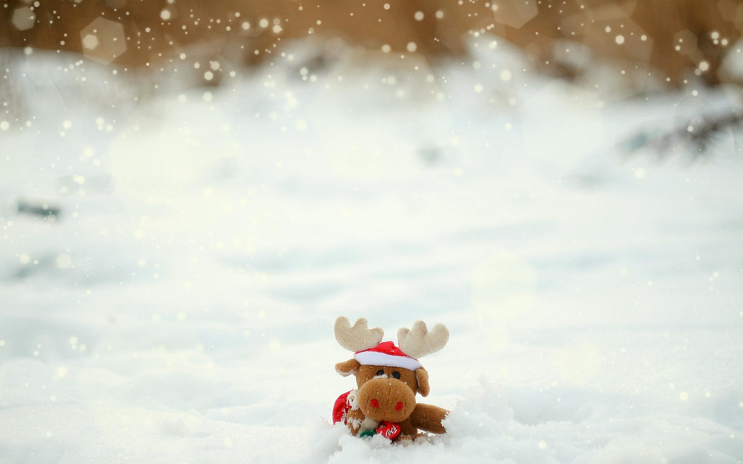 22590 скачать обои Рождество (Christmas, Xmas), Новый Год (New Year), Праздники, Игрушки, Снег - заставки и картинки бесплатно