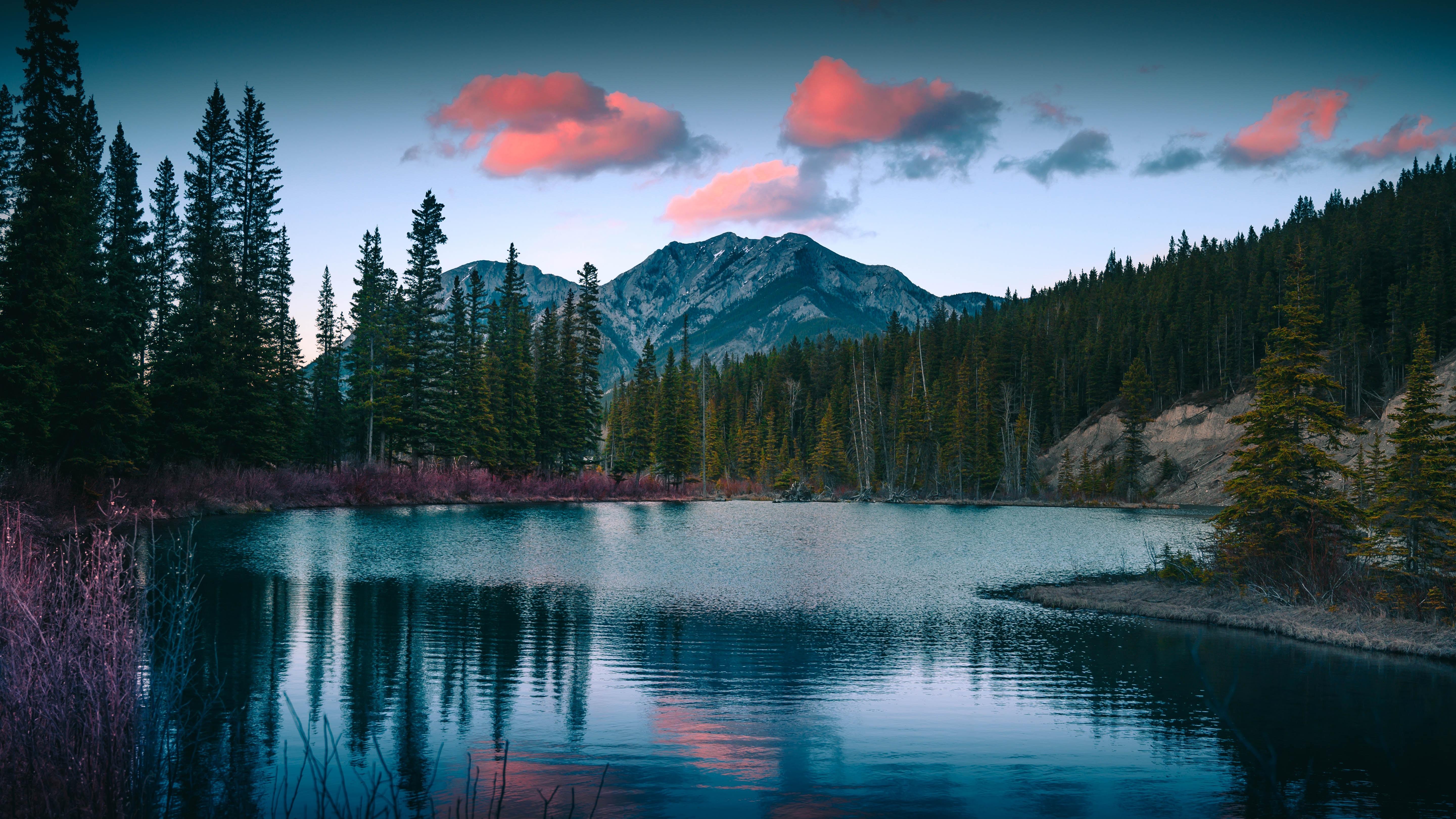 112454 Hintergrundbild herunterladen Landschaft, Natur, Mountains, See, Wald - Bildschirmschoner und Bilder kostenlos