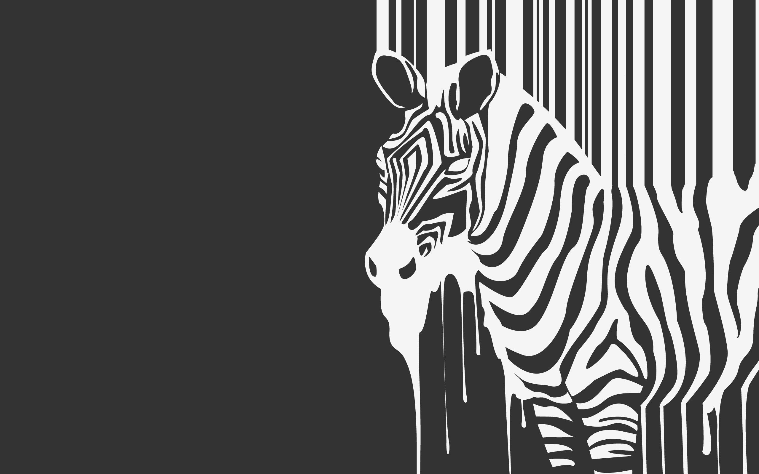 97867 download wallpaper Minimalism, Stripes, Strips, Beast, Zebra, Flowing, Flows screensavers and pictures for free