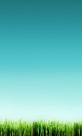 27511 скачать обои Трава, Фон, Небо - заставки и картинки бесплатно