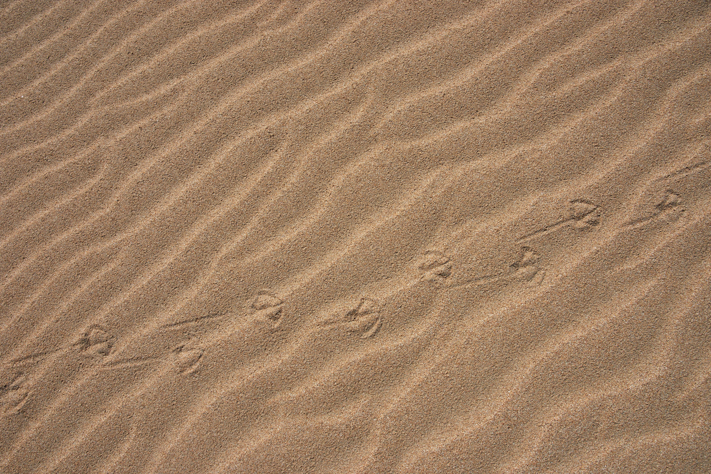 79311 Protetores de tela e papéis de parede Miscelânea em seu telefone. Baixe Miscelânea, Areia, Deserto, Variado, Traços fotos gratuitamente