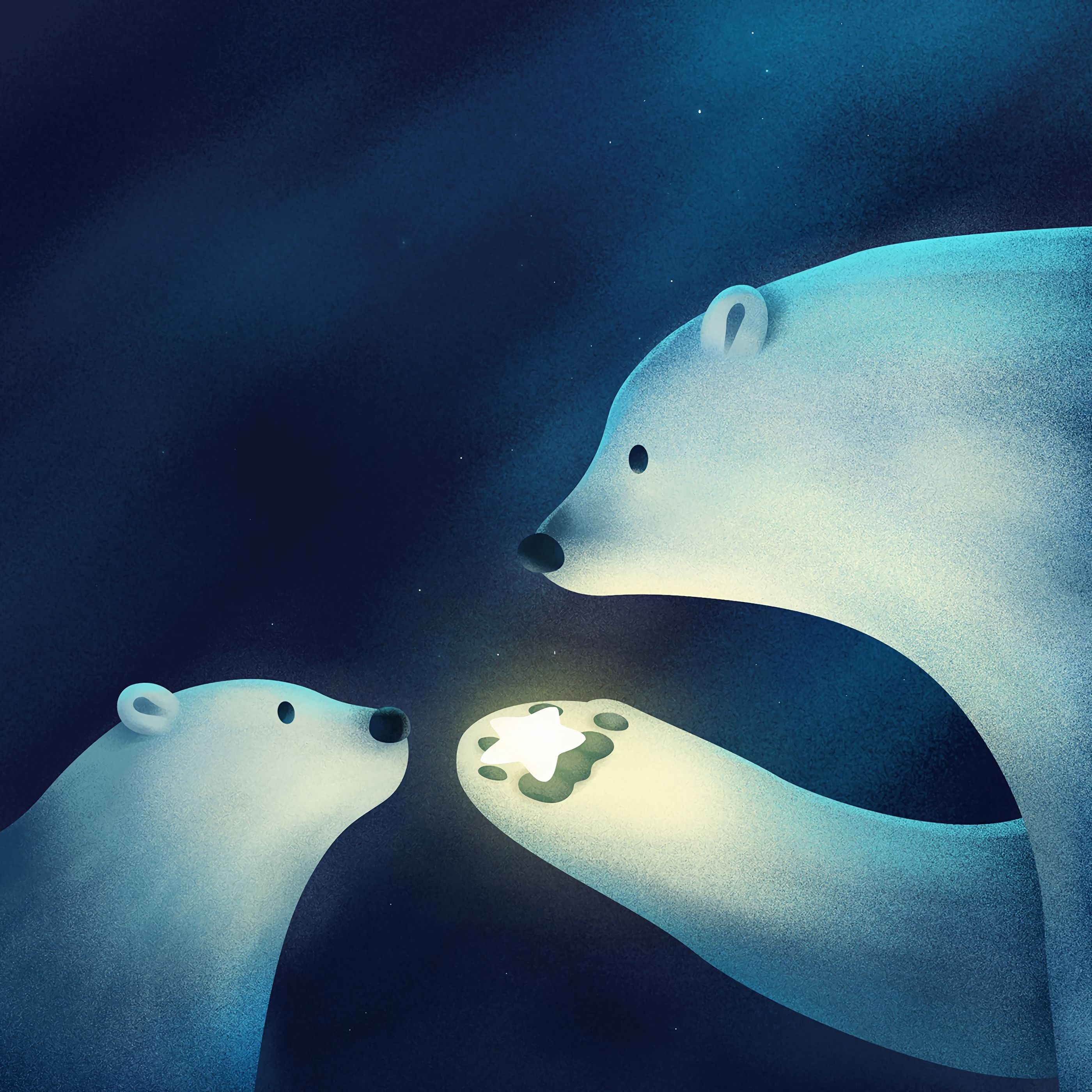 62880 Screensavers and Wallpapers Young for phone. Download Art, Young, Couple, Pair, Joey, Star, White Bears, Polar Bears, Paw pictures for free