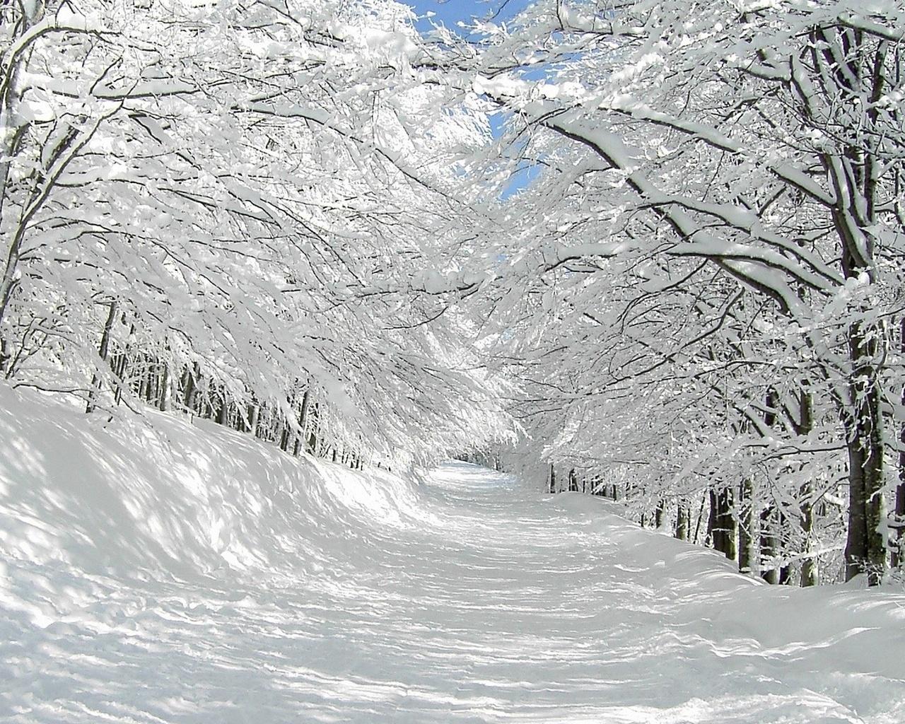 23021 скачать обои Пейзаж, Деревья, Дороги, Снег - заставки и картинки бесплатно