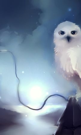 15071 download wallpaper Animals, Owl, Pictures screensavers and pictures for free