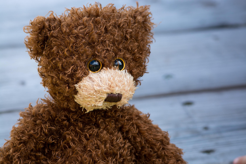 112341 скачать обои Разное, Плюшевый Медведь, Кудрявый, Игрушка - заставки и картинки бесплатно