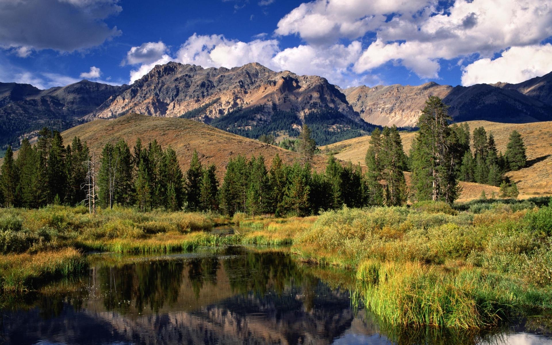 5301 скачать обои Пейзаж, Деревья, Горы - заставки и картинки бесплатно