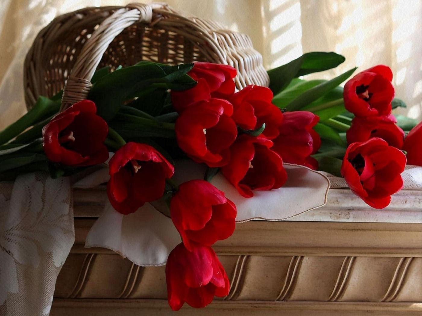 27821 скачать обои Растения, Цветы, Тюльпаны, Букеты - заставки и картинки бесплатно