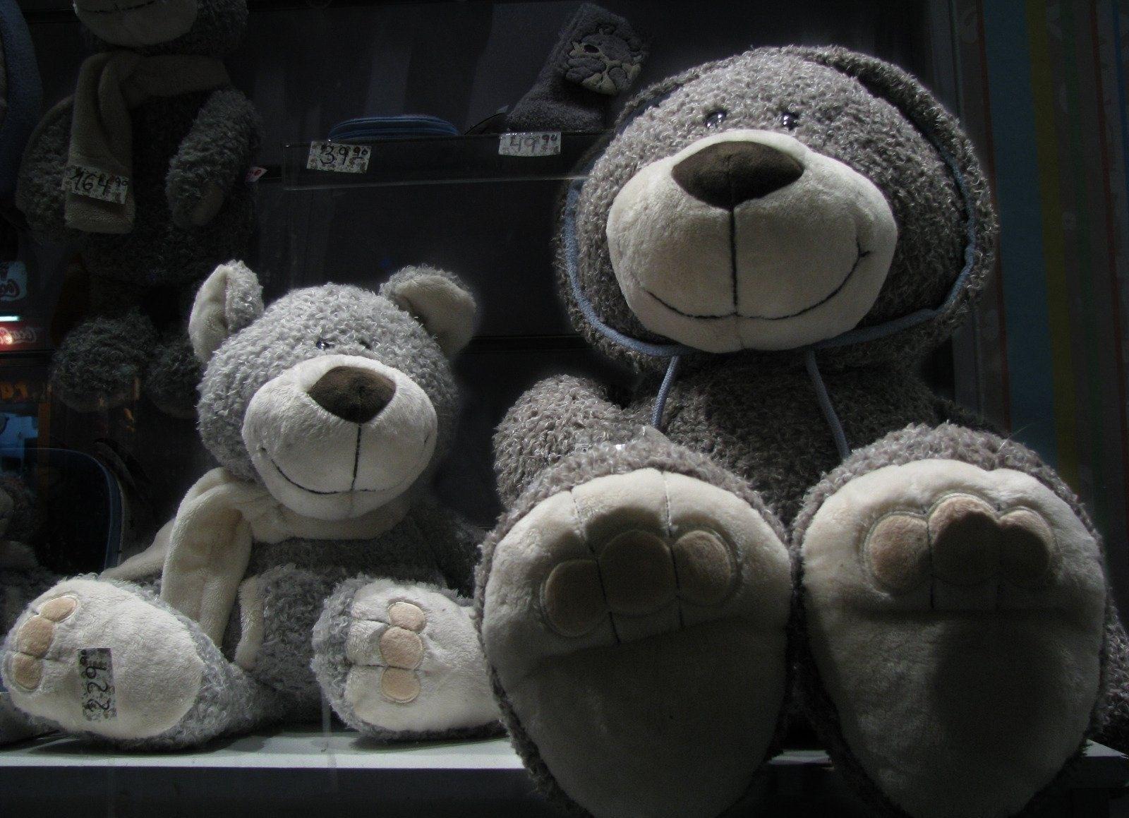 153005 Заставки и Обои Медведи на телефон. Скачать Игрушки, Медведи, Разное, Множество, Полка, Магазин картинки бесплатно