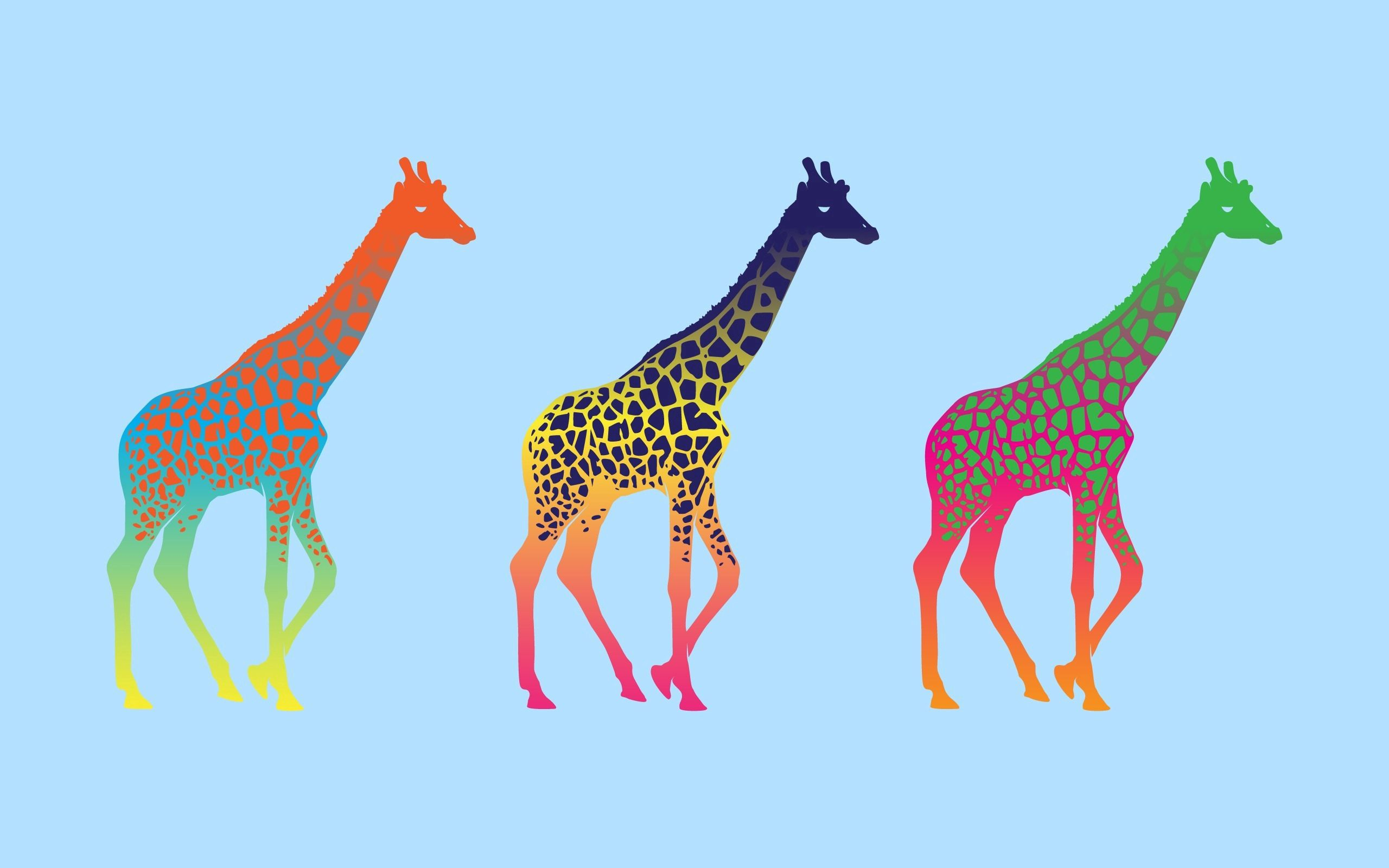 123317 download wallpaper Vector, Three, Row, Multicolored, Giraffes screensavers and pictures for free