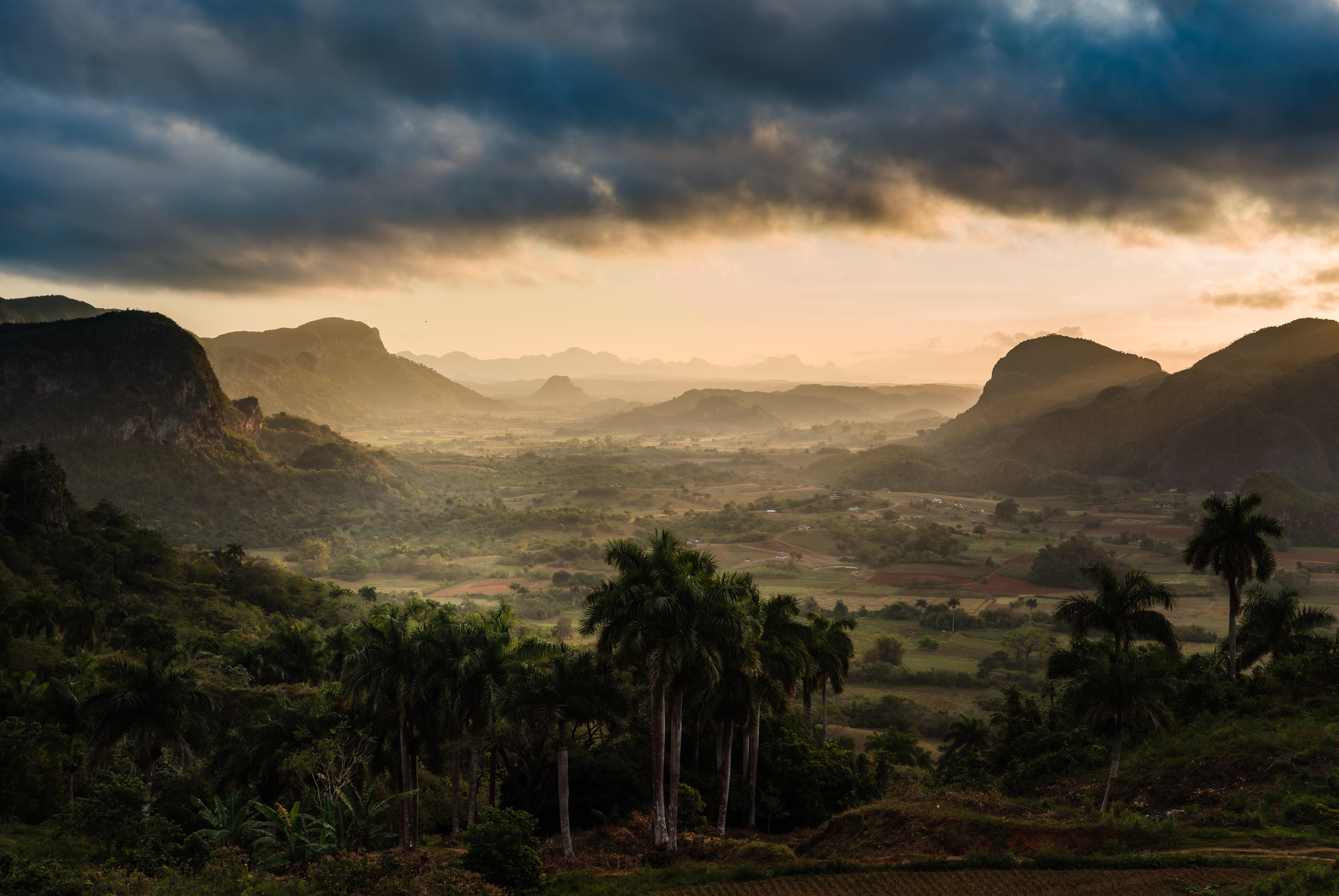 150669 скачать обои Природа, Туман, Облака, Горы, Пальмы - заставки и картинки бесплатно