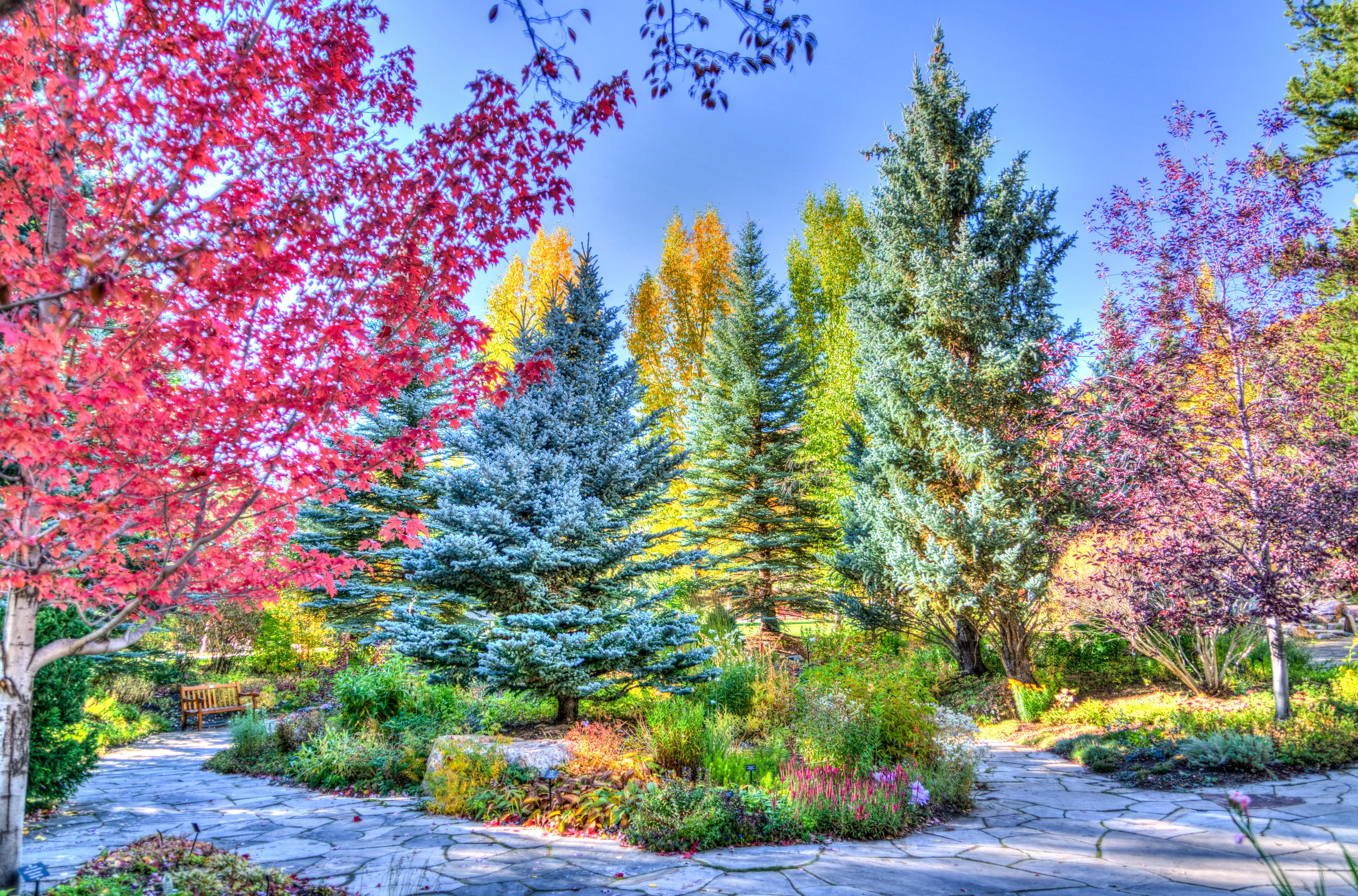 133580 fond d'écran 1080x1920 sur votre téléphone gratuitement, téléchargez des images Nature, Le Parc, Parc, Hdr, Colorado, Weile, Vejle 1080x1920 sur votre mobile
