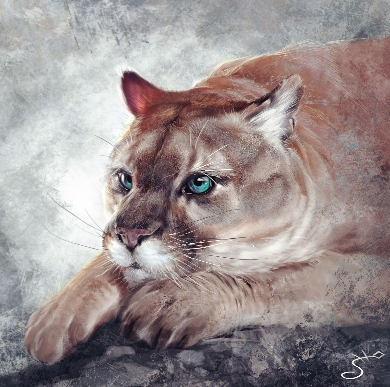 99145 download wallpaper Jaguar, Predator, Art, Big Cat, Muzzle screensavers and pictures for free