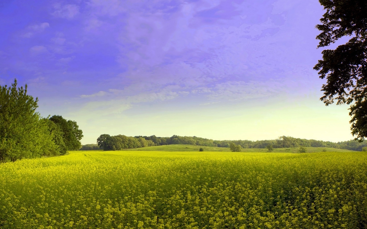 1968 download wallpaper Landscape, Grass, Sky screensavers and pictures for free