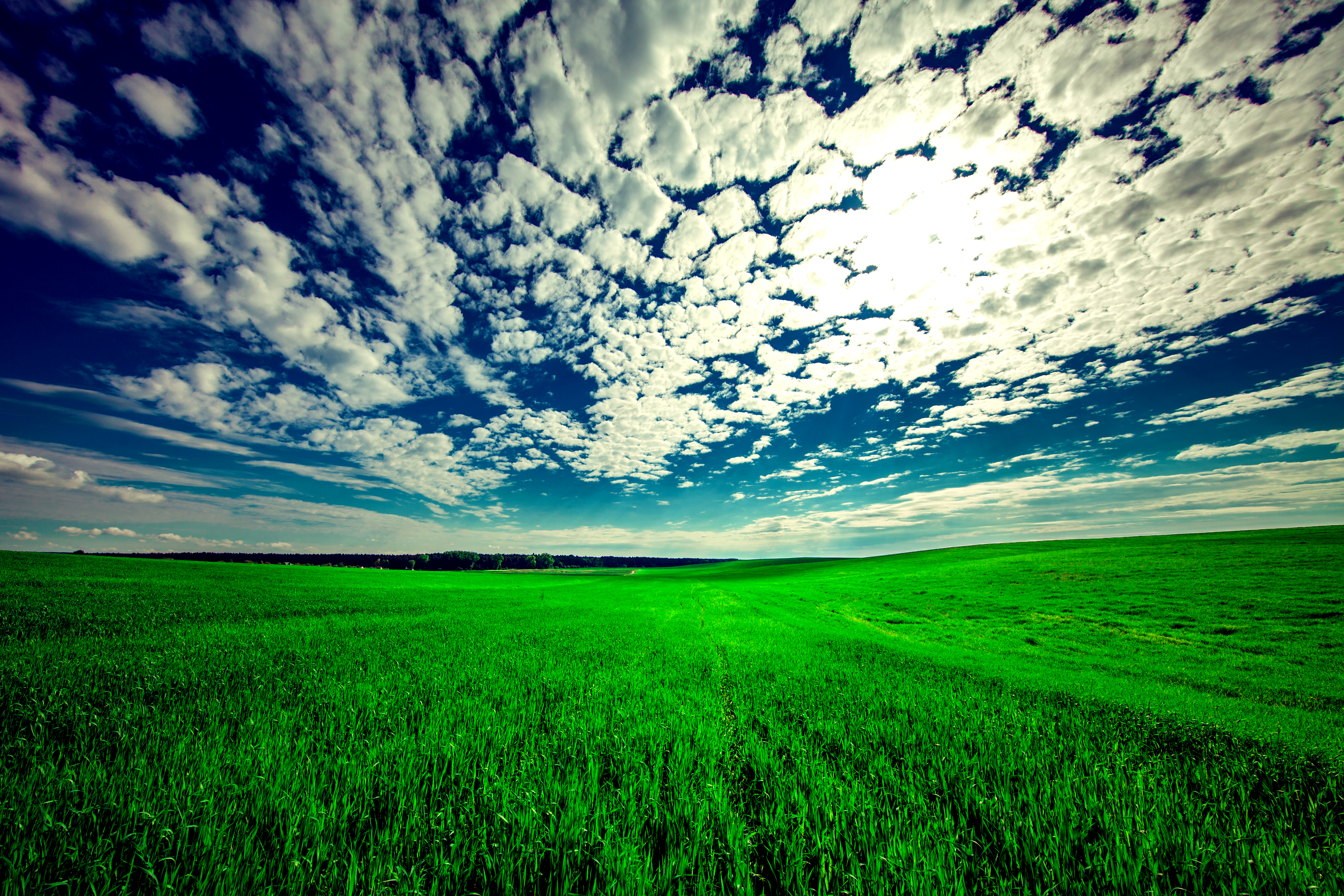 140223 Screensavers and Wallpapers Summer for phone. Download Nature, Grass, Sky, Clouds, Summer, Field pictures for free