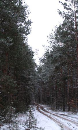2069 descargar fondo de pantalla Plantas, Paisaje, Invierno, Árboles, Carreteras, Nieve: protectores de pantalla e imágenes gratis
