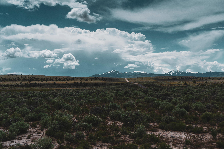 91888 papel de parede 1080x2400 em seu telefone gratuitamente, baixe imagens Paisagem, Natureza, Montanhas, Deserto, Horizonte, Estrada, Caminho 1080x2400 em seu celular