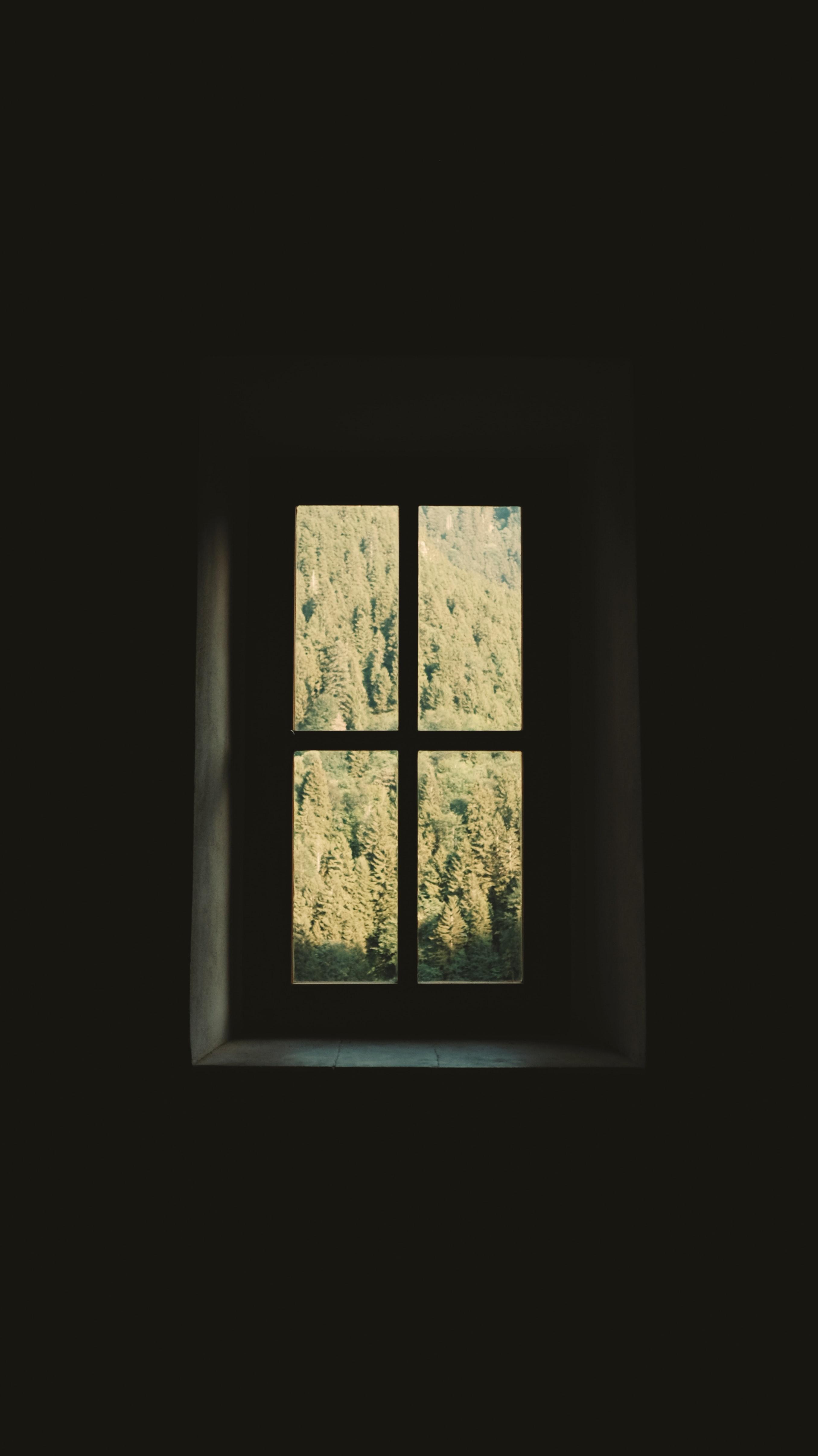 123592 скачать обои Темные, Окно, Комната, Стена, Деревья, Темный - заставки и картинки бесплатно