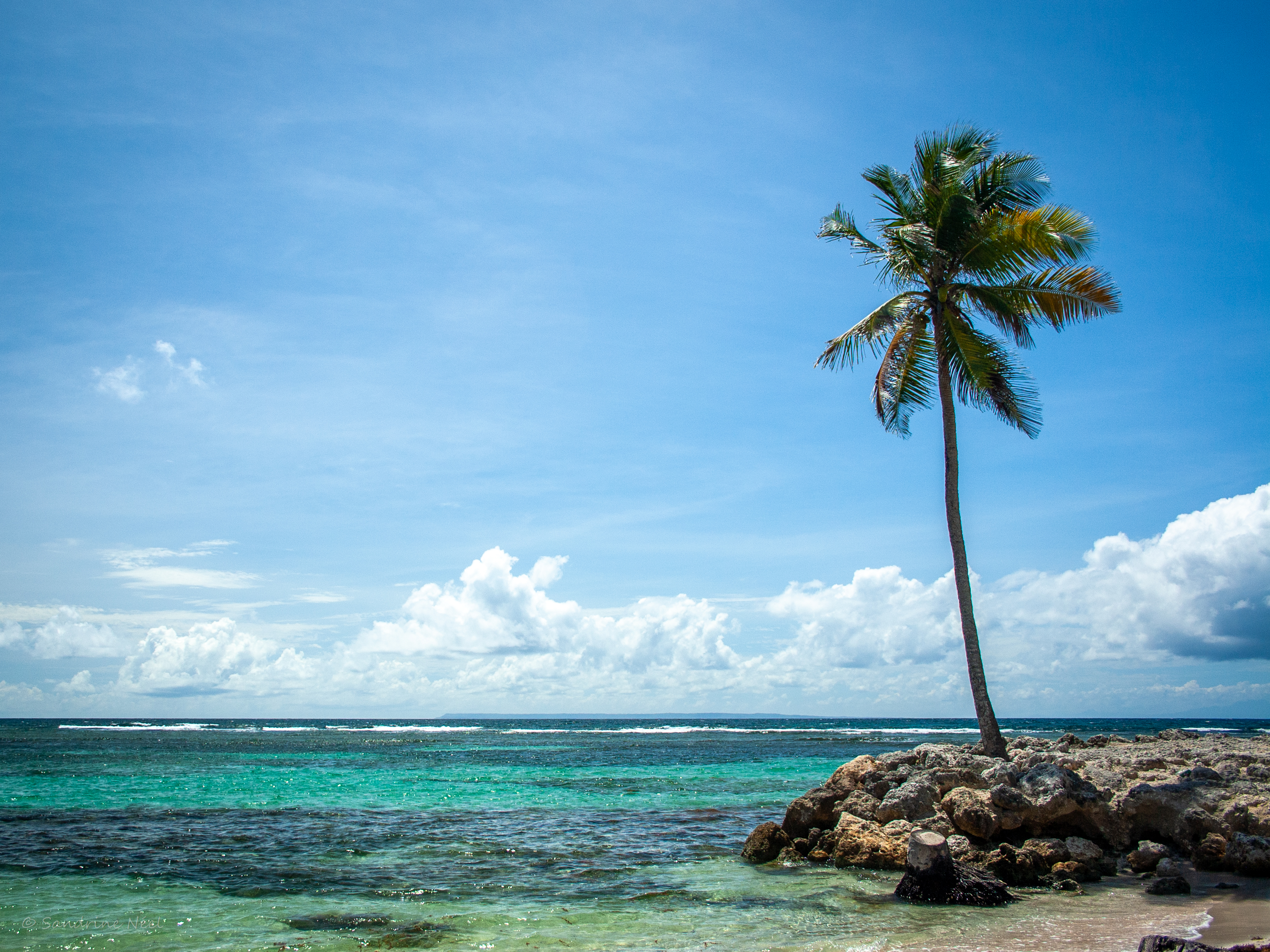 116251 Screensavers and Wallpapers Island for phone. Download Nature, Sea, Summer, Palm, Tropics, Island pictures for free