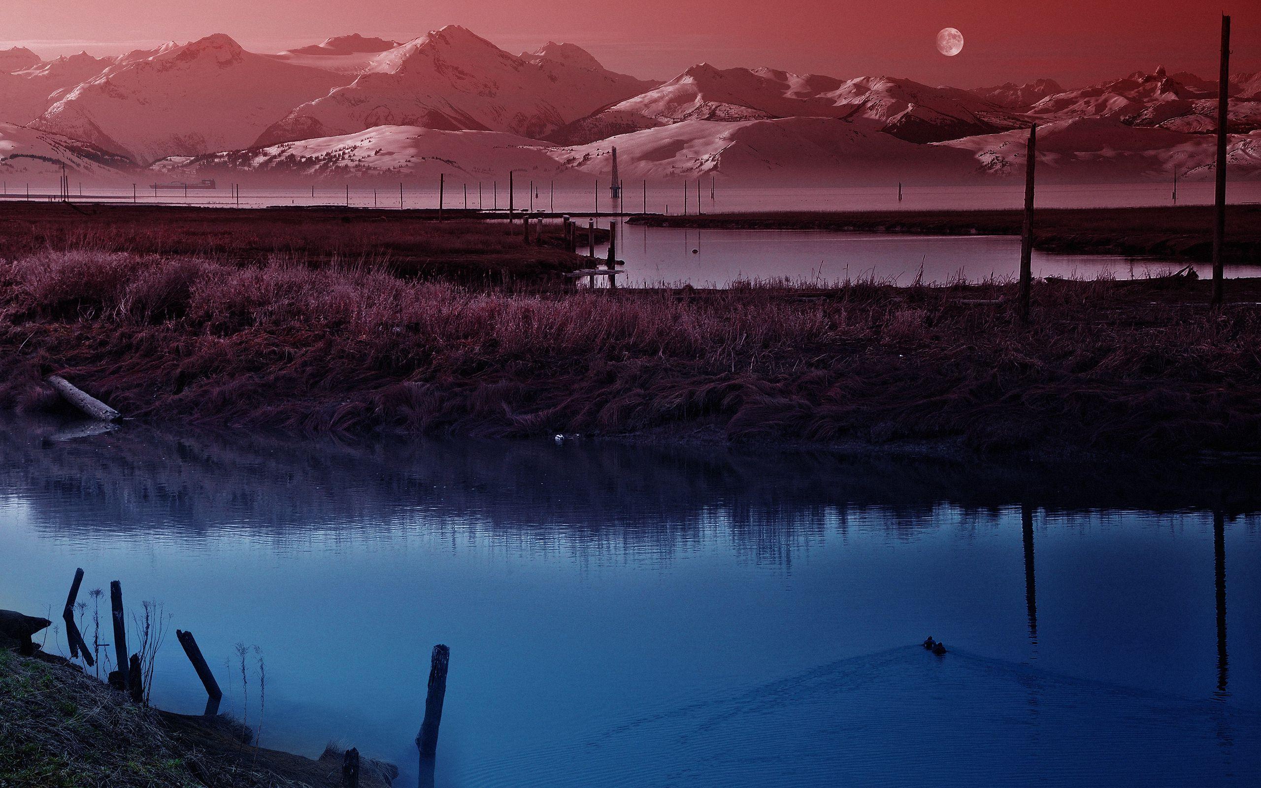 99743 скачать обои Утки, Природа, Небо, Луна, Сумерки, Вечер, Тишина, Пруд - заставки и картинки бесплатно